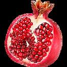 single half pomegranate-png-image-thumb.