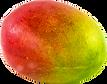 mango_transparent.png