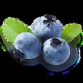 Blueberry_transparent.png