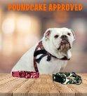 poundcake approved collar