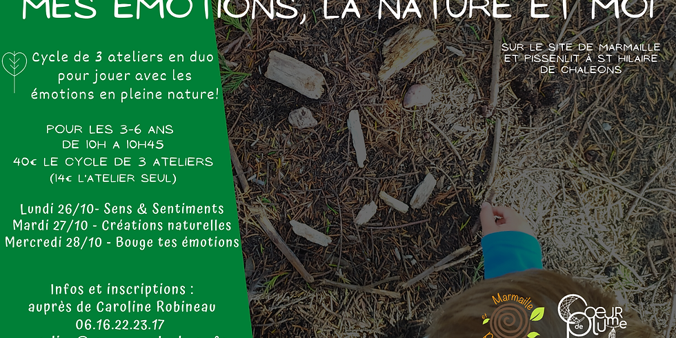 """Cycle d'ateliers """"Mes émotions, la nature et moi"""" 3-6 ans"""