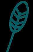 cdp-element-graphique-plume-vert-sombre%