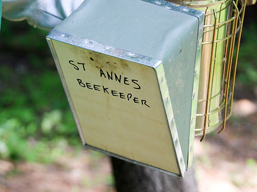 St. Anne's Bees