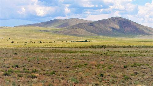4.7 Acres Of Southern Colorado Beauty Near Sanchez Reservoir!