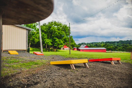 Maple Tree Corn hole.jpg