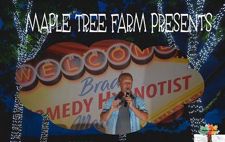 Maple Tree Brad Matchett.jpg