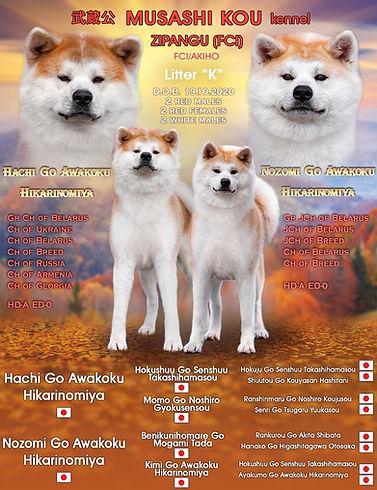 Litter K promo.jpg