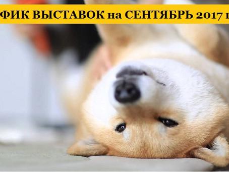 ГРАФИК ВЫСТАВОК на СЕНТЯБРЬ 2017 года