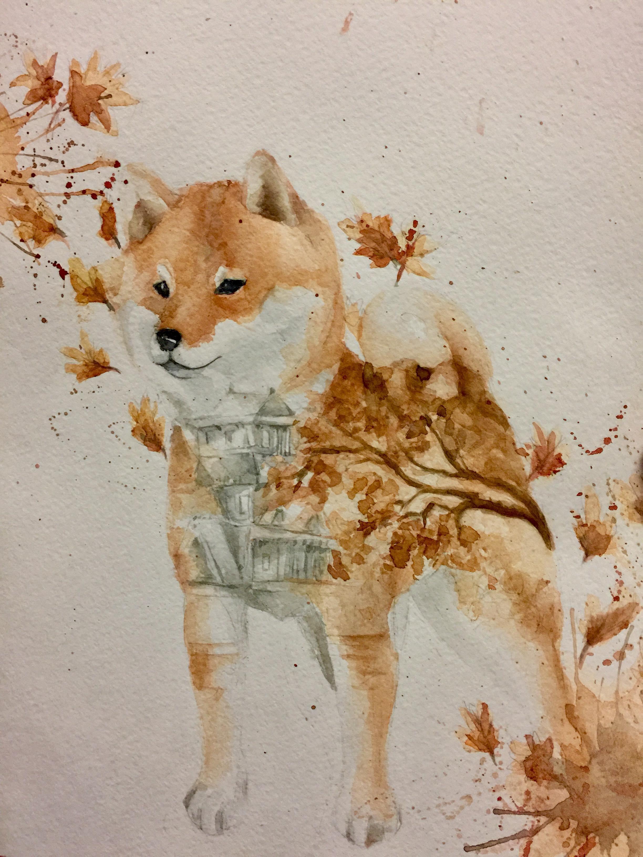 Shiba ART by Anna Lapina