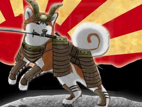 Японской собаке - японское имя!