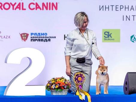 "RBIS BABY НА CACIB ""РОССИЯ - 2018"""