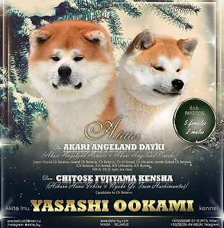 YASASHI OOKAMI-2019 ИСПР.jpg