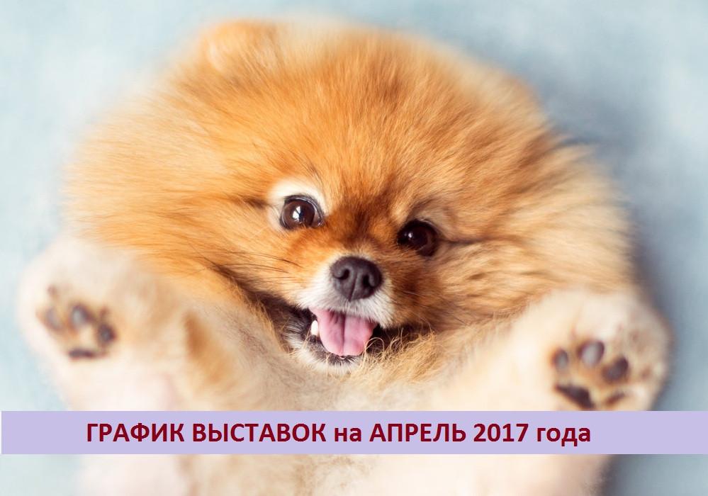 Выставки собак - Апрель 2017, Беларусь