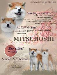 Помет В питомника MITSUHISHI