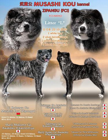 Litter L promo.jpg