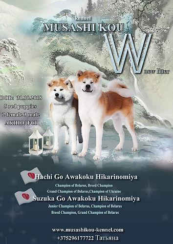 Litter W.JPG