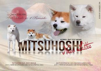 Помет Б питомника MITSUHISHI