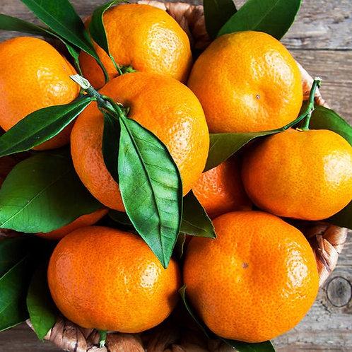 Mandarin Orange Medley
