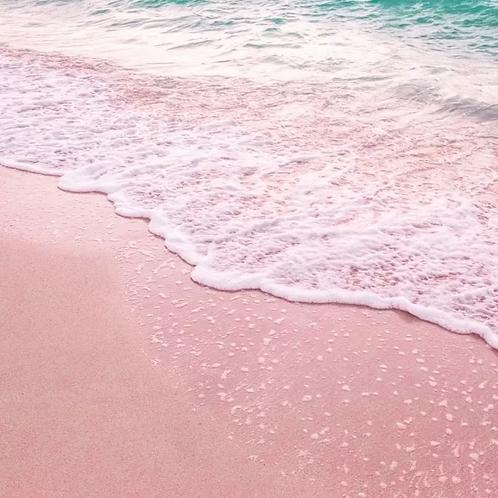 Seaside Blossom