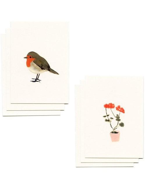 Set Minikarten mit Kuvert Geranie & Rotkehlchen