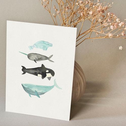 Wale | Bär von Pappe
