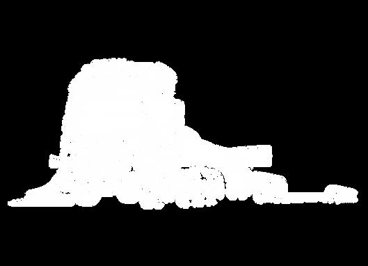 SLS Schwerlast Logistik & Service GmbH BF3 BF3+ BF4 WVZ Anlagen Begleitfahrzeuge