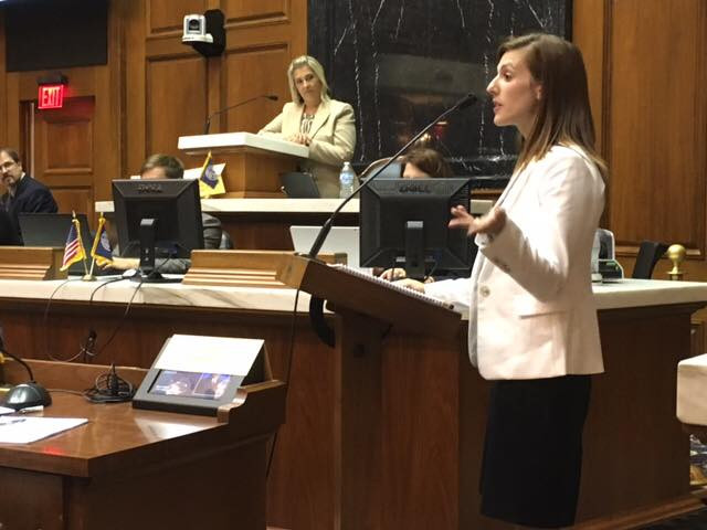 IDHA Member Heather Taylor speaks to House Representatives