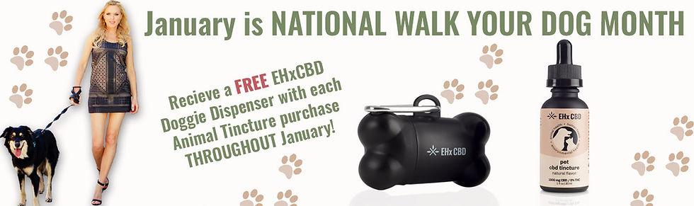 Walk Your Dog.jpg