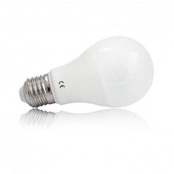 Ampoule LED E27, bulbe, 15W (x2)