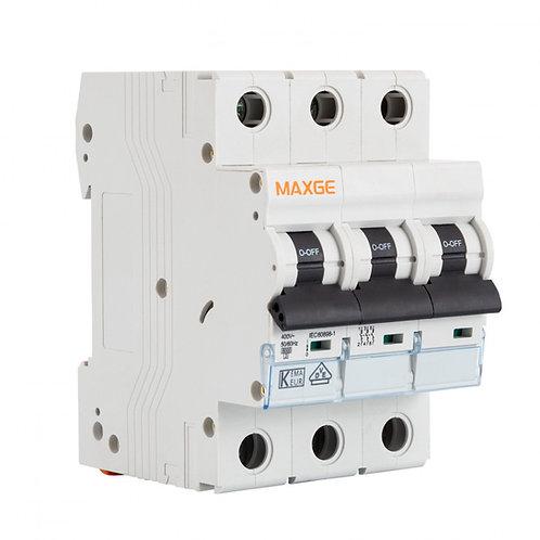Disjoncteur automatique résidentiel MAXGE, 3P, 6kA, 16A