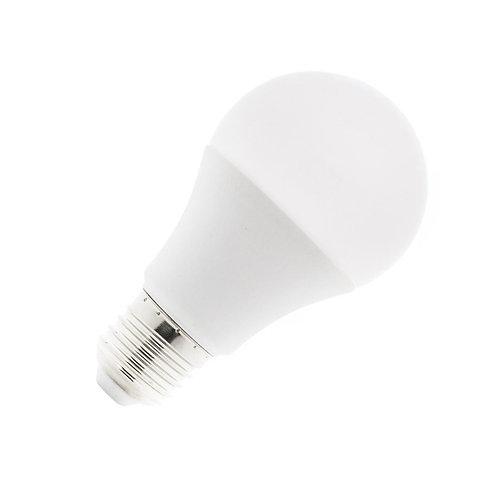 Ampoule LED E27 A60, 12/24V, 6W