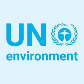 UN-Environment.jpg