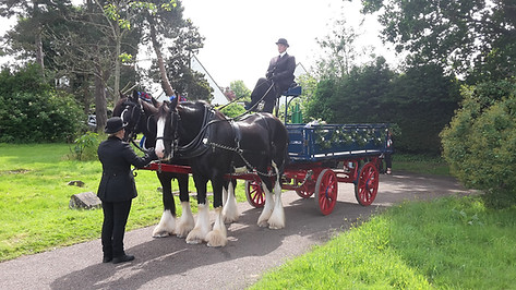 Holly's Funerals Horsedrawn carriage