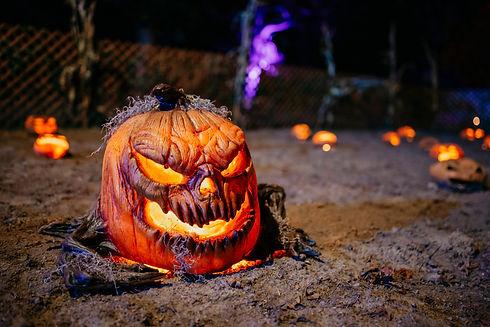 Halloween Grant's Farm.jfif
