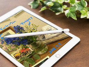 アップルペンシルでiPadの写真にちょこっとメモ