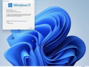 秋登場予定の新世代Windowsは「11」で確定?