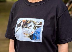 「Graphite by BeCasso」+「UTme!」Tシャツを作ってみた