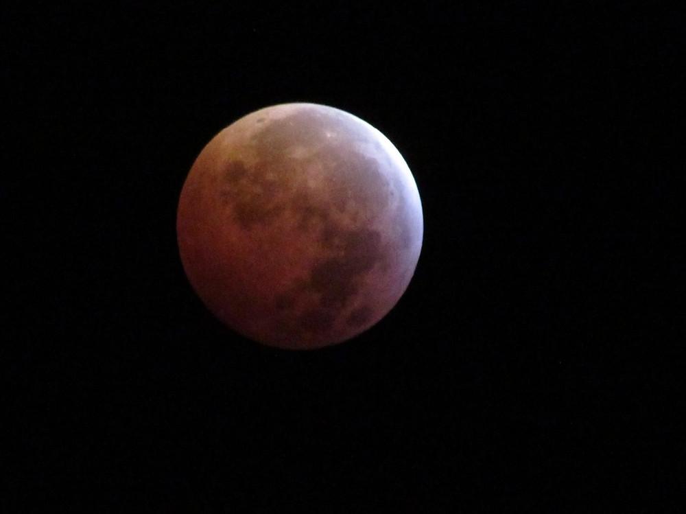 January Super Blood Wolf Moon
