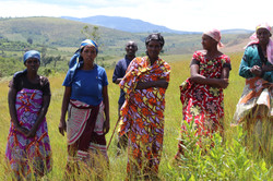 Women Reforesters