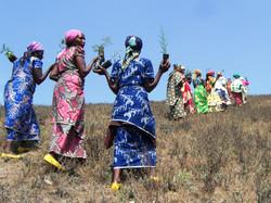 Tree planting women
