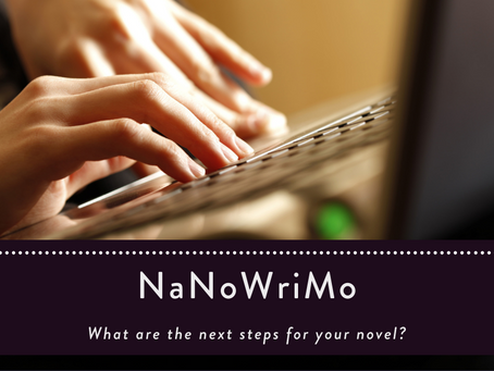 What are the next steps for your novel?