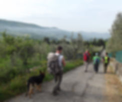 Via degli Dei con cani