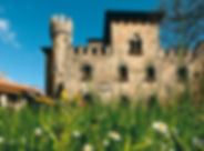 Castello Manservisi.jpg