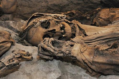 Le Mummie di Roccapelago