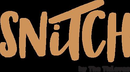 Snitch Logo Colour.png