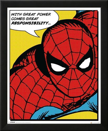 Spider-Man Quote Wall Art