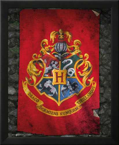 Harry Potter Hogwarts Flag Wall Art