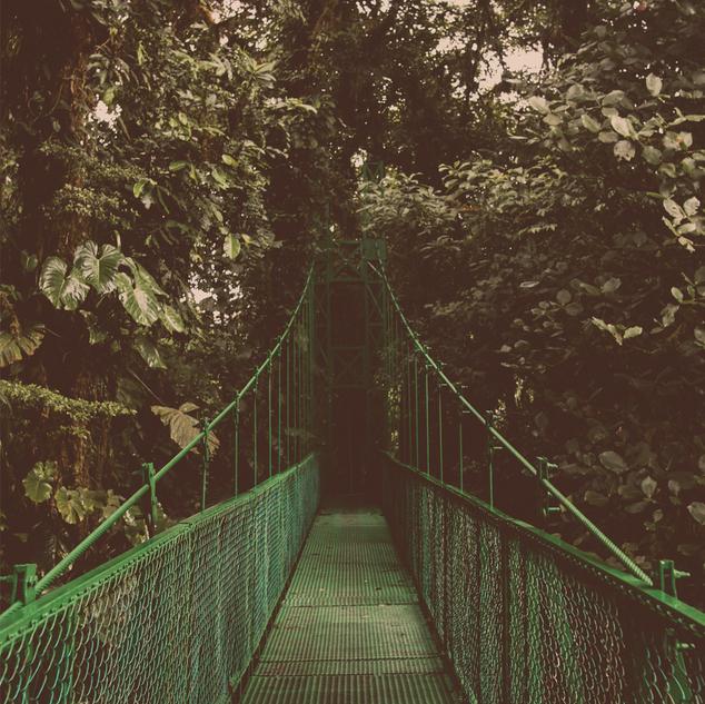 green bridge orange PSD.png