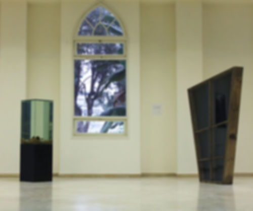 Liat Iris  Installation View