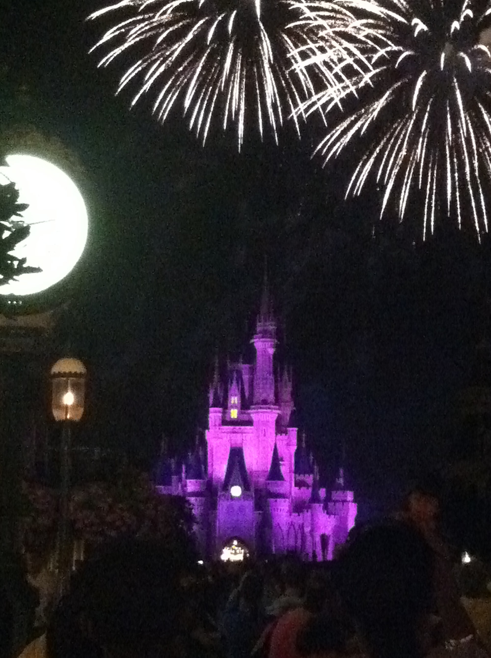 An old picture I took at Magic Kingdom